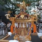 荏原五丁目 豪龍曾の神輿1